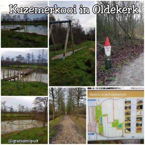 Kuzemerkooi in Oldekerk