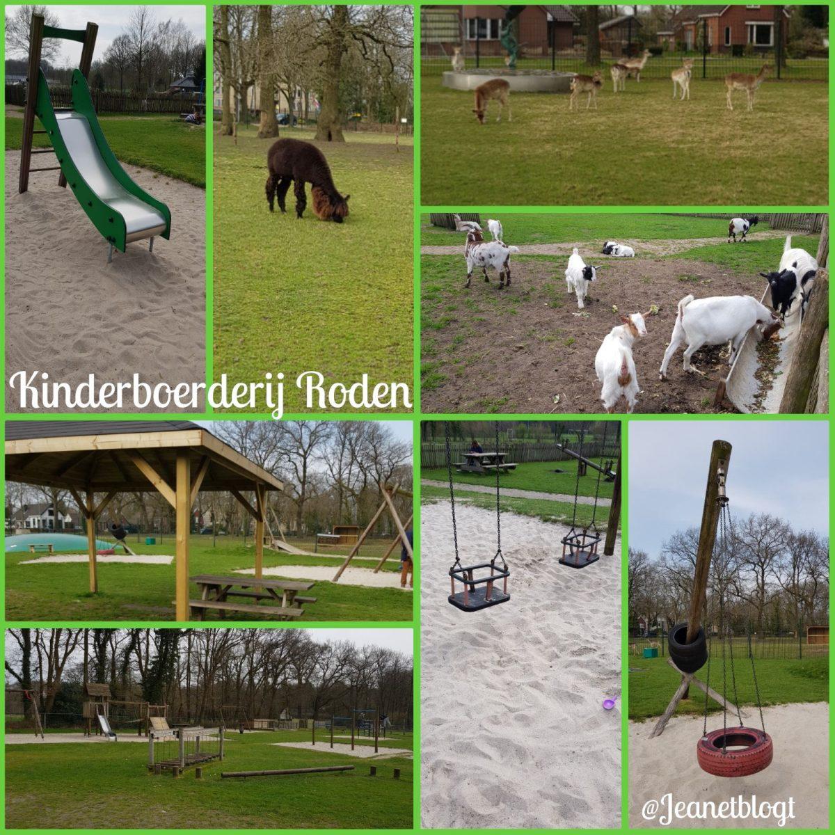 Kinderboerderij met speeltuin in Roden.