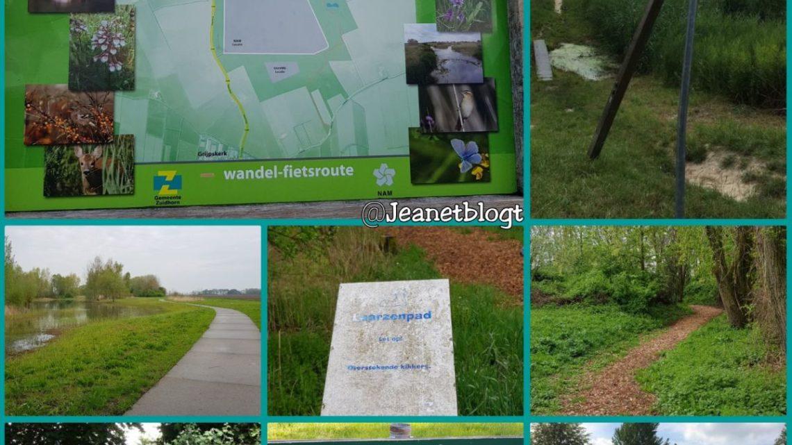 Natuurpark De Noorderriet in Grijpskerk en Kommerzijl.